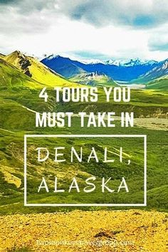 4 Tours You Must Take in Denali, Alaska. Most tourists and travelers alike seem to have dreams of visiting Alaska. Big mountains, big skies, big wildlife. There is so much to see and do in Alaska that you could fill months and months with activities. Visiting Alaska, whether on a road trip or cruise, is definitely worth adding to your travel bucket list.