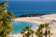 At the southern tip of the Baja California Peninsula lies one of Mexico's top tourism hotspots: Los Cabos.  During Cabo's high season—which runs from just before Christmas to just after Easter—thousands of tourists flock to this top travel destination. It's not hard to see why: miles of pristine beaches, delicious local cuisine, rowdy nightlife, and lavish spas make Cabo an ideal spot for travellers looking to lie back, relax, and enjoy a drink or two.