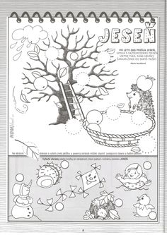 Kindergarten, Diagram, World, Kindergartens, The World, Preschool, Preschools, Pre K, Kindergarten Center Management
