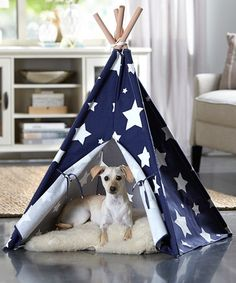 I NEED 2 OF THESE!  So CUTE!  Another great find on #zulily! Blue Stars Pet Teepee #zulilyfinds