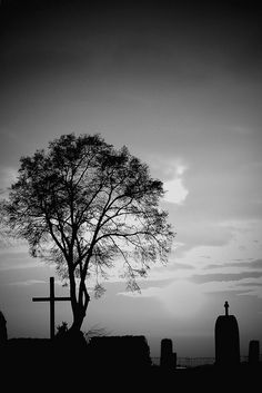 night in a cemetary I love cemeteries. Smoleńsk in flickr Agata photo stream http://www.flickr.com/photos/agatauw/