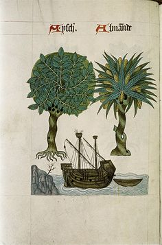 Ash and Almond, large wooden 2-masted ship with anchor on sea by rocks. Norfolk 1530 Tudor Pattern Book