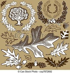 Vector - Oak Leaf Collection - stock illustration, royalty free illustrations, stock clip art icon, stock clipart icons, logo, line art, EPS picture, pictures, graphic, graphics, drawing, drawings, vector image, artwork, EPS vector art