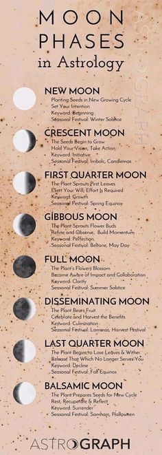 Moon Spells, Wiccan Spells, Green Witchcraft, New Moon Rituals, Witchcraft For Beginners, Moon Calendar, Herbal Magic, Moon Magic, Astrology Zodiac