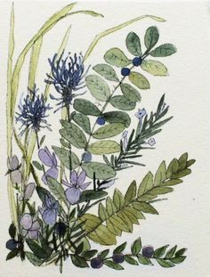 Watercolor Woodland Flowers Nature Art Illustration Quote Botanical Garden Artwork by Laurie Rohner Garden Illustration, Botanical Illustration, Botanical Art, Watercolor Illustration, Watercolor And Ink, Watercolor Flowers, Watercolor Paintings, Woodland Flowers, Flower Artwork