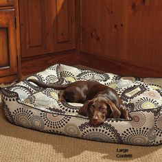 Cute Dog Bed - Jax & Bones Lounge Bedding for Dogs