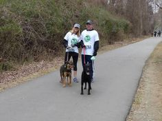 2014 Waggin Wild 5K Love Pet, Shutterfly, Adoption, Walking, Running, Pets, Foster Care Adoption, Keep Running, Walks