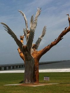 Oak tree killed by hurricane Katrina.angels carved by volunteers. So much good came from the worst storm in American history. The Mississippi Gulf Coast looked like an atomic bomb had been dropped. Bad Storms, Hurricane Katrina, Down South, Oak Tree, Natural Disasters, Mississippi, American History, Places To See, Beautiful Places