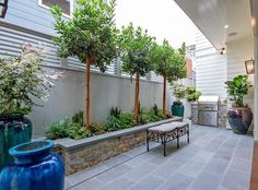 Small Backyard Patio with outdoor kitchen and large planters. #smallbackyard #smalloutdoorkitchen #outdoorkitchen Brandon Architects, Inc.
