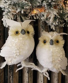 Are there trees or branches in your decor? Add these 7.5 Inch White Sisal Feathered Owls Set of 2 Ornaments!