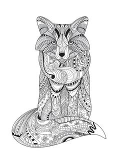 Fox For Colouring Book