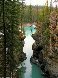 vacation travel photos - Jasper National Park, Alberta, Canada