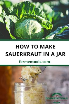 When life gives you cabbage, you make delicious sauerkraut! It's a combination of one of the healthiest foods there is with one of the most time-honored food preparation methods ever used, called fermentation. In this post, we'll go through the simple process of how to make sauerkraut at home in a fermentation jar. Use the Fermentools starter kit to make fermented foods at home.  how to make sauerkraut, healthy easy sauerkraut recipes, homemade diy sauerkraut, howtofermentfood, fermentvegetables Fermenting Jars, Fermentation Recipes, Canning Recipes, Easy Sauerkraut Recipe, Making Sauerkraut, Fermented Cabbage, Fermented Foods, Canning Food Preservation, Canning Pickles