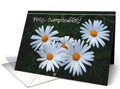 Happy  Birthday daisies spanish | Spanish | Greeting Card Universe