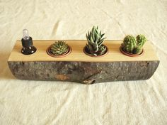 Wooden planter. Amazing!