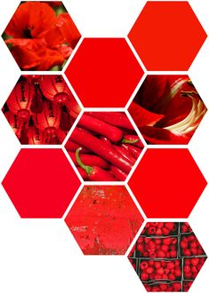 Inspiration Boards, Color Inspiration, Red Paper, Red Walls, Hexagons, Paper Lanterns, Color Stories, Red Poppies, Pattern Paper