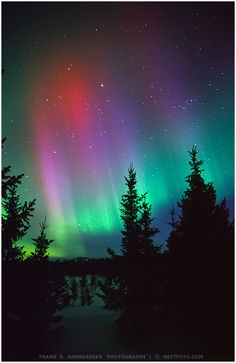 The Northern Lights - Norway, December 2014