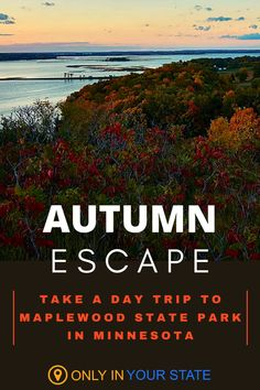 Enjoy a day of fall fun outdoors, surrounded by natural beauty at the little known Maplewood State Park in Minnesota. You'll find miles of hiking and horseback riding trails, lakes and ponds for kayaking, picnic areas, and plenty of fall foliage. It's perfect for a local autumn day trip in nature, and it's family-friendly! Vacation Destinations, Vacation Spots, Cool Places To Visit, Places To Go, Horseback Riding Trails, Local Attractions, Picnic Area, Ponds, Autumn