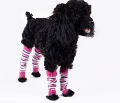 Cashmere leg warmers found at Fido's Laundry