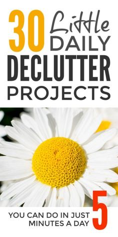 Declutter and organi