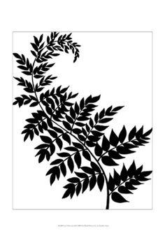 Leaf Silhouette III