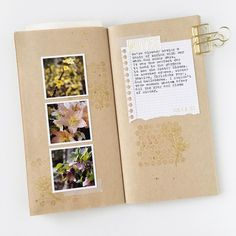 New pages in my everyday adventure TN to record some of the winter blooms we spotted on Saturday. Struggled with these, but I figure it never hurts to try different things, even if my first, second, or third ideas weren't used.   #midori #travelersnotebook #everydayadventures