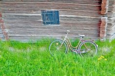 Cycle, Barn, Summer, Country