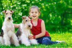 awesome Niños: beneficios de tener una mascota