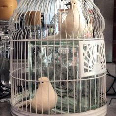 Vintage bird cage containing faux doves for a Victorian curiosities cabinet vignette! Pure whimsey!