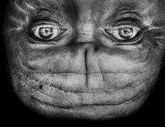 """Photos Prove That Upside-Down Faces Look A Lot Like Aliens """"Alienation"""" by South African photographer Anelia Loubser"""