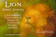 Do you have the heart of a #lion? Take this magical quiz to discover your spirit animal now! #Quiz