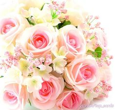 Открытки – 4 406 фотографий Pink Rose Bouquet, Pink Roses, Bouquet Flowers, Birthday Wishes, Happy Birthday, Rosa Rose, Free Pictures, Decoration, Pink Color