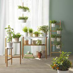 La vie en vert. Tendance éphémère ou réel besoin, les gens expriment de plus en plus leur besoin de vivre au vert même quand ils habitent un petit appartement. IKEA répond à ce désir de vivre en harmonie avec la nature par des potagers urbains, des mini serres déco, des porte-plantes aux allures de paravent, autant d'éléments qui permettent à chacun d'afficher sa fibre écolo. Après tout, la vie est plus jolie en vert !