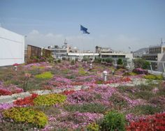 The Treasury in Athens, Greece goes green roofed