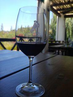 Tasting the Ridgeback Journey at Ridgeback Wines, Paarl Wines, Red Wine, Alcoholic Drinks, Journey, Glass, Beautiful, Alcohol, Drinkware, Corning Glass