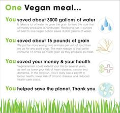One Vegan Meal. These are some of the good reasons to skip meat and dairy, even just a couple of times a week.