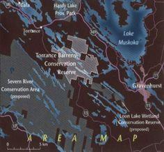 Image result for torrance barrens