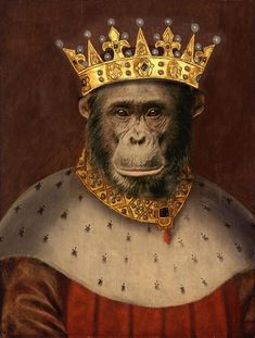 Items similar to Print for children wall art, signed by artist, photography collage, King monkey, matted. on Etsy Monkey Art, Monkey King, Year Of The Monkey, Childrens Wall Art, Classic Series, Animal Heads, Photomontage, Pet Clothes, Animal Paintings