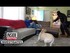 If A Masked Intruder Broke Into Your Home Would Your Dog Attack