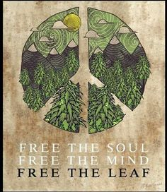 #FreeTheSoul #FreeTheMind #FreeTheLeaf #CannabisFreedom #FreeTheSeed #Freedom #Peace #Love #Nature #NaturesMedicine