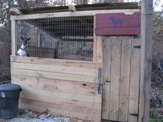 Predator proof goat house...something I need to be concerned about