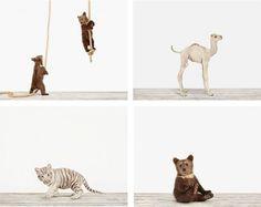 Handmade Animal Portraits – Fubiz™