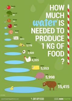 How much water is needed to produce 1 kg of food? Vegan food consumes less water, it's better for you and for our planet.