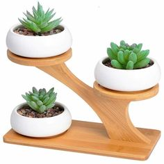3 White Ceramic Succulent Pots with 3 Tier Bamboo Saucers Stand Holder - Modern Decorative Flower Planter Plant Pot with Drainage - Home Office Desk Garden Mini Cactus Pot Indoor Decoration Succulent Pots, Succulents, Small Wood Projects, Art Projects, Garden Projects, House Plants Decor, Woodworking Projects Diy, Woodworking Guide, Decorating Blogs