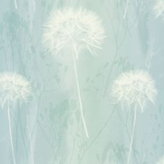 Arthouse Dandelion haze Duck egg Floral Wallpaper - B&Q for all your home and garden supplies and advice on all the latest DIY trends Duck Egg Blue Wallpaper, Teal Wallpaper, Blue Wallpapers, Pattern Wallpaper, Feature Wallpaper, Bedroom Wallpaper, Fabric Wallpaper, Wallpaper Ideas, Duck Egg Blue Living Room