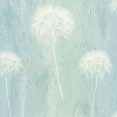 Arthouse Dandelion Haze Duck Egg Floral Wallpaper   Departments   DIY at B&Q