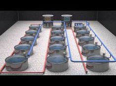 Have you heard of aquaponics? Aquaponics Combines the Growing of Fish and Plants You may grow plants in water and without soil and once one does this together with growing fish you are practicing aquaponics. Prawn Farming, Fish Farming, Bonsai Seeds, Tree Seeds, Hydroponics System, Hydroponic Gardening, Aquaponics Greenhouse, Bonsai Styles, Aquaponics Fish