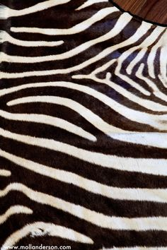 Zebra rug. In gold for Alexis office