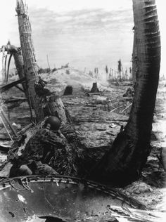 Taking the slim protection that a blasted three affords, this Marine picks-off the Japs in a pill box on Tarawa. A Jap in a pill box must be shot thr...
