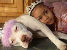 Pit bull princess